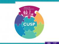"The ""Patient and Family Engagement"" module of the Comprehensive Unit-based Safety Program (CUSP) Toolkit. The CUSP toolkit is a modular approach to patient safety, and modules presented in this toolkit are interconnected and are aimed at improving patient safety."