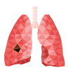 Lung Cancer Toolkit for Smokers
