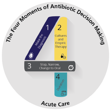 The Four Momemts of Antibiotic Decision Making Logo