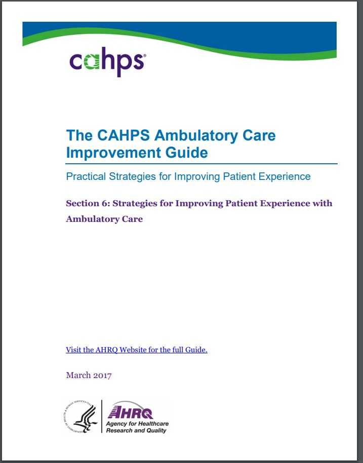 cover of Section 6: Strategies for Improving Patient Experience With Ambulatory Care