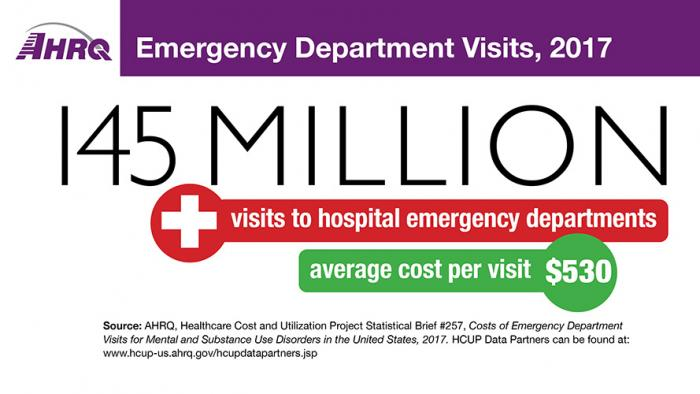 Emergency Department Visits, 2017: 145 Million visits to hospital emergency departments; Average cost per Visit: $530.