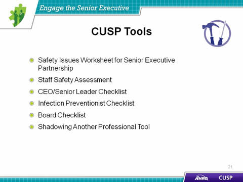 Safety issues worksheet for senior executive partnership staff safety