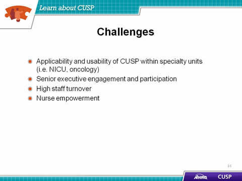 Applicability and usability of CUSP within specialty units (i.e. NICU, oncology). Senior executive engagement and participation. High staff turnover. Nurse empowerment.