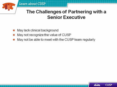 May lack clinical background. May not recognize the value of CUSP. May not be able to meet with the CUSP team regularly.
