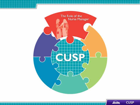 CUSP Toolkit, The Role of the Nurse Manager, Facilitator