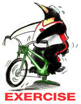 Image of a penguin on an exercise bicycle