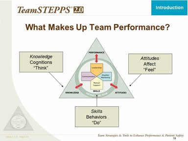 What Makes Up Team Performance?