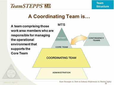A Coordinating Team is…