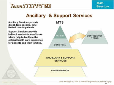 Teamstepps Fundamentals Course Module 2 Team Structure