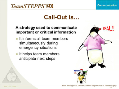 Text Description is below the image. Image: A penguin wearing a scrub top shouting, 'Seal!'