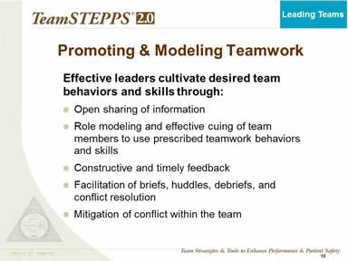 Promoting & Modeling Teamwork