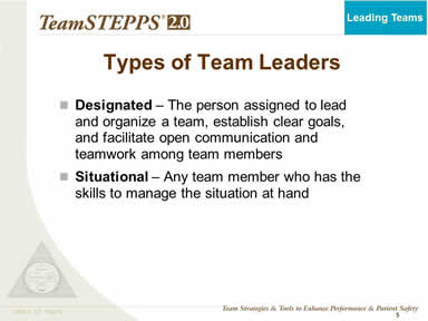 Types of Team Leaders