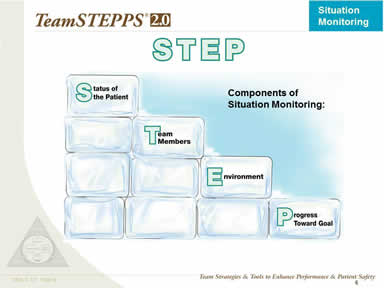 STEP: Components of Situation Monitoring