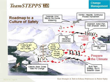 Roadmap to a Culture of Safety. Image: Penguins try various strategies to find their way to safety.