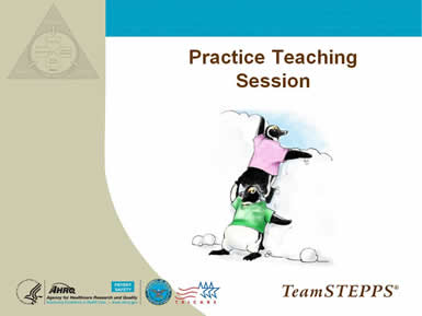Cover slide: Practice Teaching Session. Image: One penguin stands on the shoulders of another to look over an obstacle.