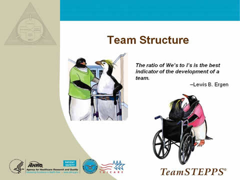 Team Structure... the remaining slide text is below this image.