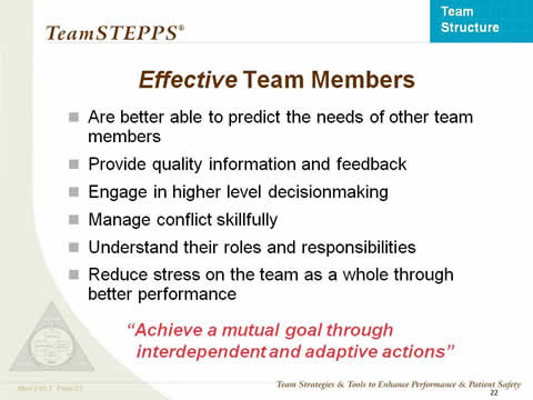 Effective Team Members... the remaining slide text is below this image.