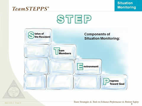 STEP: Diagram of ice blocks showing stepped arrangment, labeled: Status of the resident; Team members; Environment; Progress toward goal.
