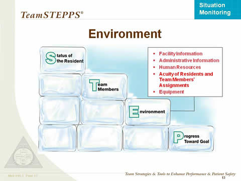 STEP diagram using stacked ice blocks, emphasizing Environment. Text box: Facility information, administrative information, human resources, acuity of residents and team members� assignments, equipment.