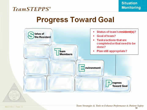 STEP diagram using stacked ice blocks, emphasizing Progress toward goal. Text box: Status of team's resident(s)? Goal of team? Tasks/actions that are completed or that need to be done? Plan still appropriate?