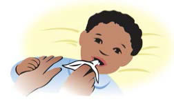Drawing of an adult cleaning baby's teeth, with caption 'Clean your baby's teeth with a clean, soft cloth or a baby toothbrush.'