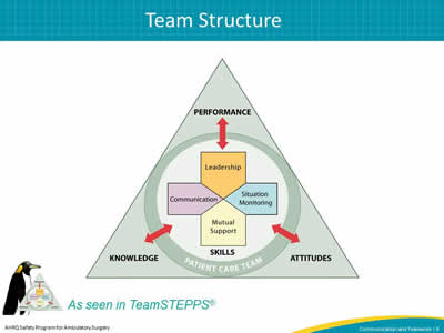 The Team Structure slide includes the TeamSTEPS triangle logo which explains how Performance, Attitudes, and Knowledge all affect the patient care team.