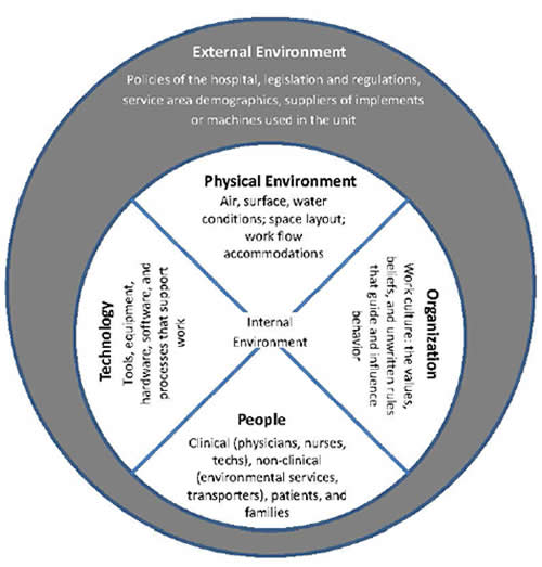 Figure 1 depicts a smaller circle inside a larger circle. The smaller circle is the Internal Environment made up of four domains: physical environment, organization, people, and technology. Examples are provided for each domain. The physical environment examples are air, surface, water conditions, space layout, and work flow accommodations. The organization example is work culture, which is the values, beliefs, and unwritten rules that guide and influence behavior. The people examples are clinic