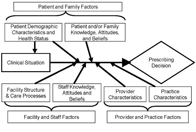 Figure 1: Conceptual model related to prescribing decisions in residential care/assisted living and nursing homes--depicts the conceptual model used in this project to develop and implement a program to reduce inappropriate antibiotic prescribing in long-term care facilities. The diagram shows patient and family factors such as demographic characteristics, health status, knowledge, attitudes, and beliefs at the top of the model flowing into the clinical situation and prescribing decisions.