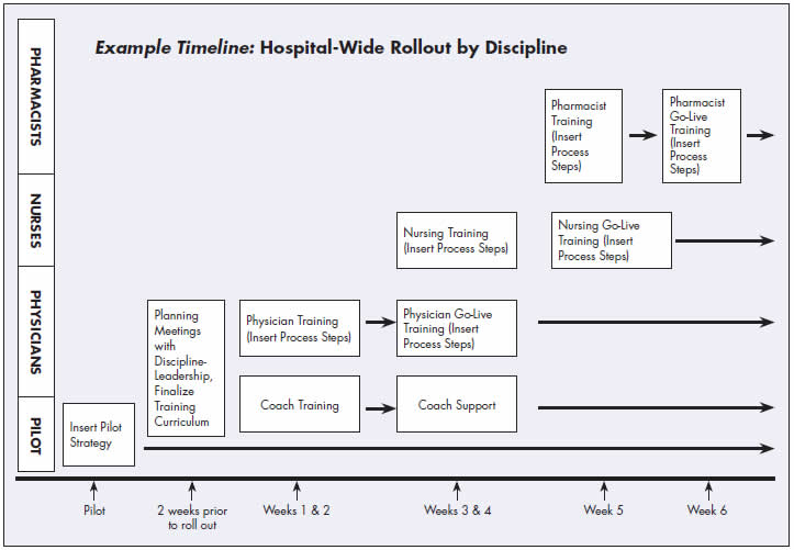 Example Timeline shows hospital-wide rollout by discipline.