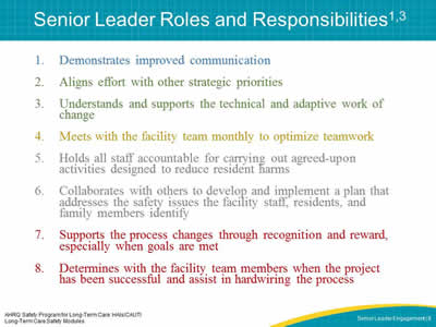 Senior Leader Roles and Responsibilities