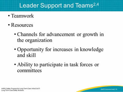 Leader Support and Teams