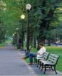 Photograph of a person seated on a park bench and reading.