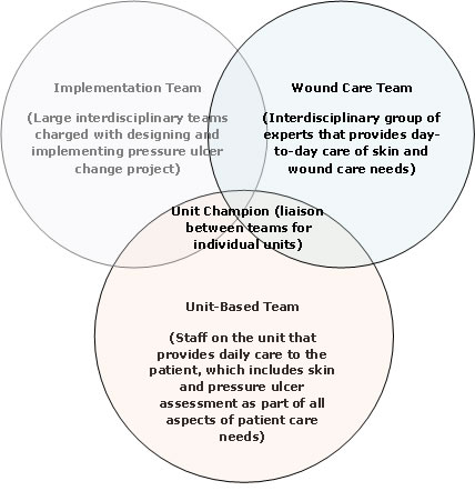 The figure consists of three overlapping circles. Text within the first circle reads, 'Implementation Team (Large interdisciplinary teams charged with designing and implementing pressure ulcer change project)'.  Text within the second  circle reads, 'Unit-Based Team (Staff on the unit that provides daily care to the patient, which includes skin and pressure ulcer assessment as part of all aspects of patient care needs)'. Text within the third circle reads, 'Wound Care Team (Interdisciplinary gro