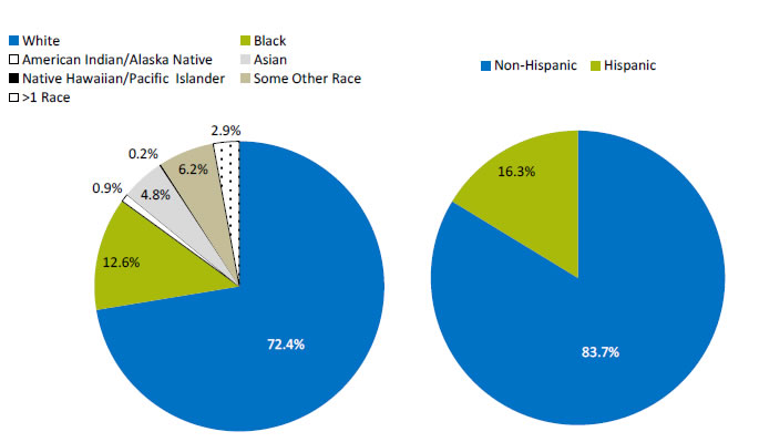 Two pie charts show the racial and ethnic makeup of the U.S. population: White, 72.4%; Black, 12.6%; American Indian/Alaskan Native, 0.9%; Asian, 4.8%; Native Hawaiian/Pacific Islander, 0.2%; Some Other Race, 6.2%; More than One Race, 2.9%. Non-Hispanic, 83.7%; Hispanic, 16.3%.