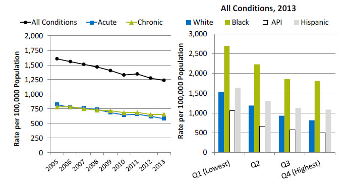Charts show potentially avoidable adult hospitalizations, by type of condition. Text description is below the image.
