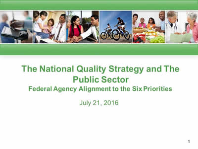 The National Quality Strategy and The  Public Sector: Federal Agency Alignment to the Six Priorities, July 21, 2016.